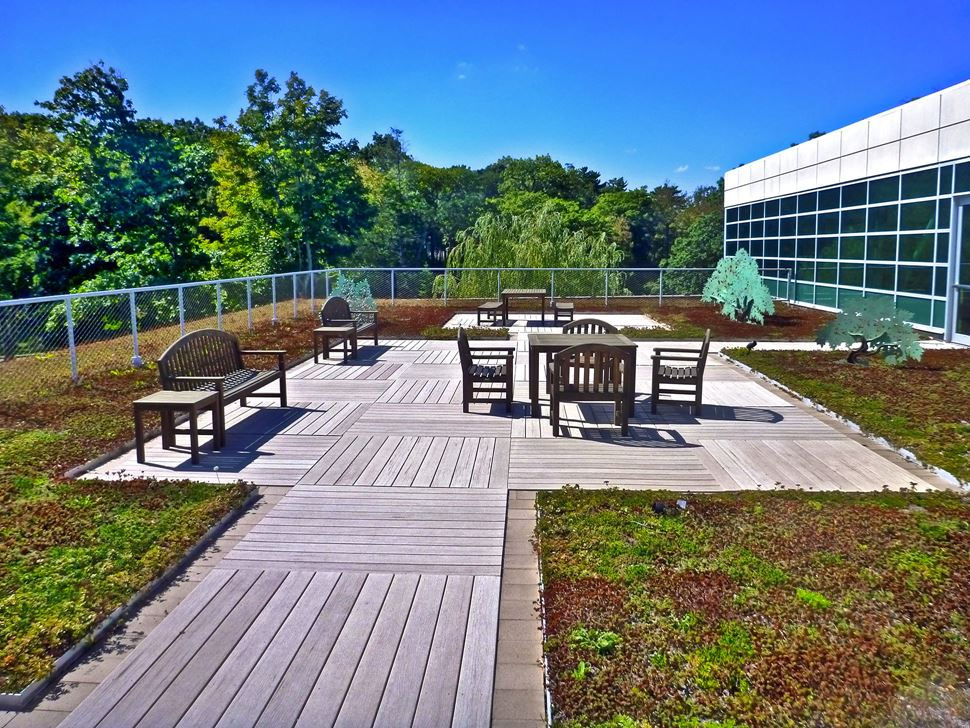 The green roof located at the Walter J. Manninen Center for the Arts