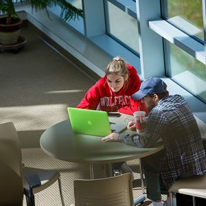 shot down on two students working on laptop in study lounge