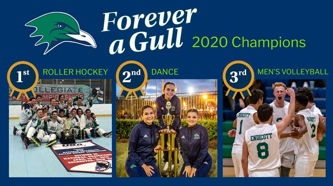 For-Ever a Gull 2020 Winners