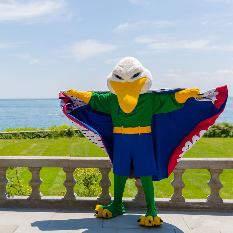 endicott gull mascot standing with wings extended with ocean in bakcground
