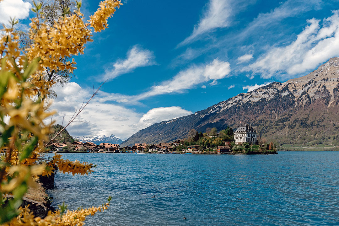 Lakeside view of Interlaken