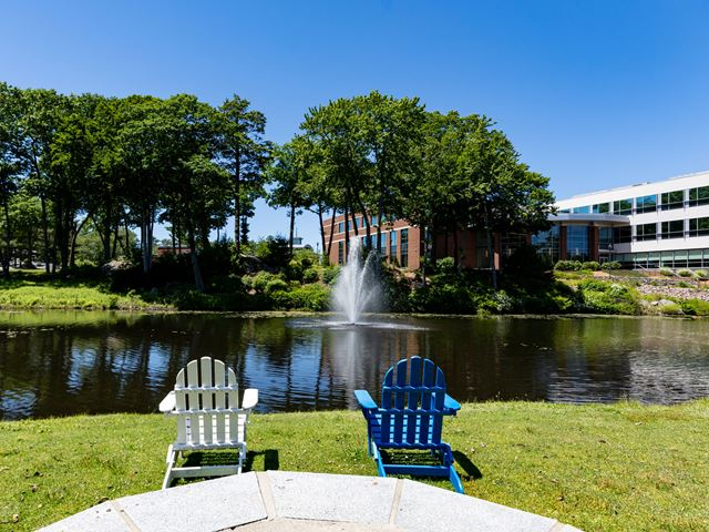 Endicott College campus during summer