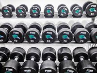 Strength and conditioning weights