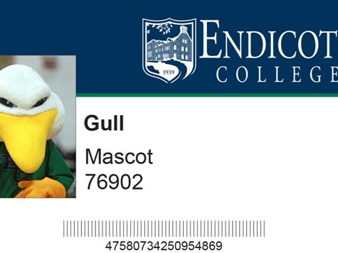sample image of a fake gull card/student ID