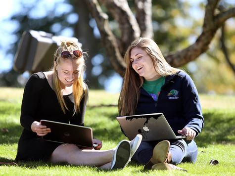 two students working on laptops in open grassy area